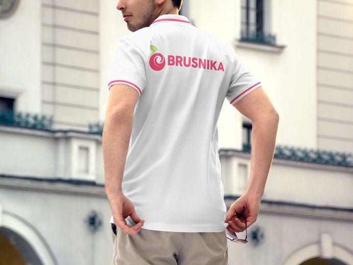 Brand Book for furniture design studio Brusnika on Behance