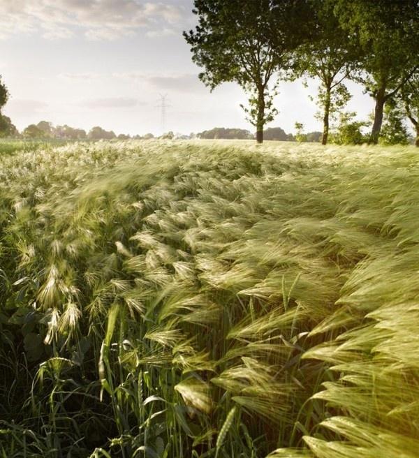 Landscape Photography by Jan Kornstaedt #inspiration #photography #landscape