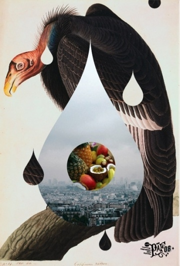 General Projects -- Miscellaneous #vulture #poster