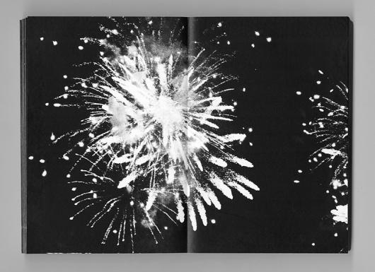 firework studies : pierre le hors #photography #book