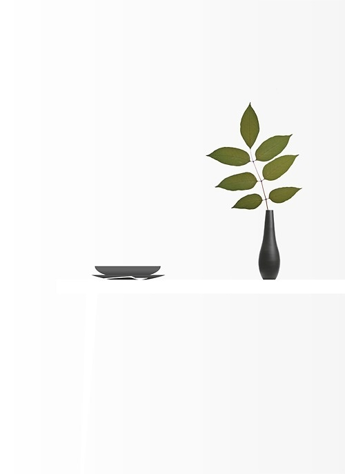 Black and White and Green #white #vase #leaf #spoon #black #flower #table #plates #green