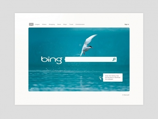 Is Bing Ugly? | The Verge Forums #desktop #design #interface #ui #windows
