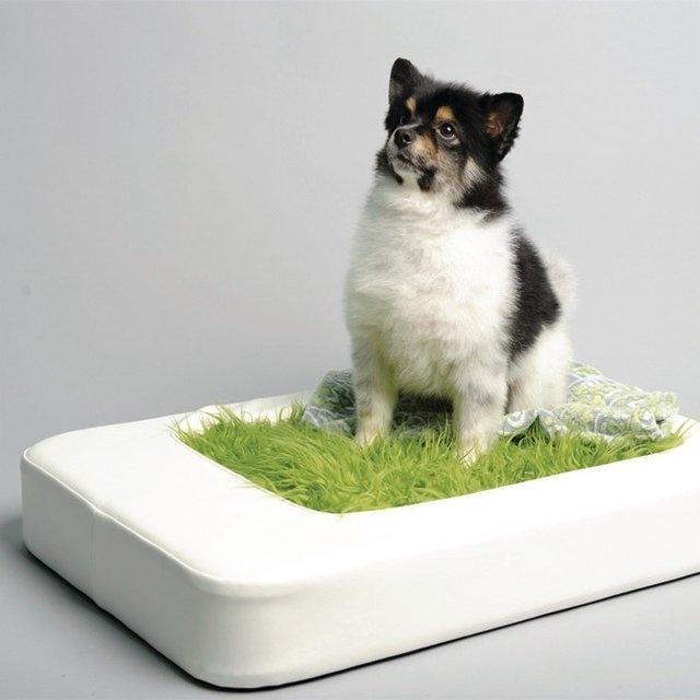 Nesto Pet Bed w/ Faux Fur Mattress #tech #flow #gadget #gift #ideas #cool