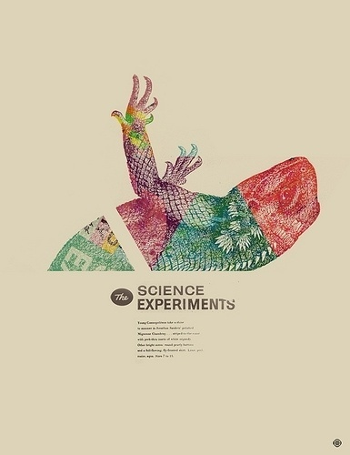 3286296133_de46f930c2.jpg (JPEG Image, 385x500 pixels) #design #animals #layout #science #typography