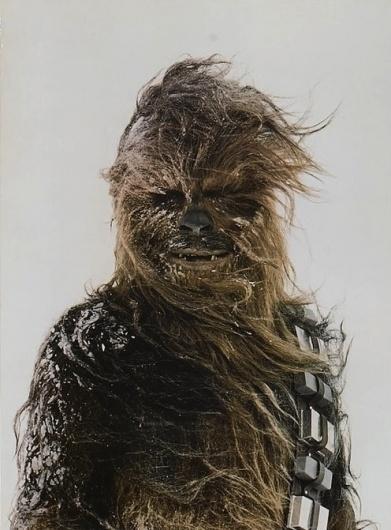 blankxpression #portrait #wars #star #chewbacca