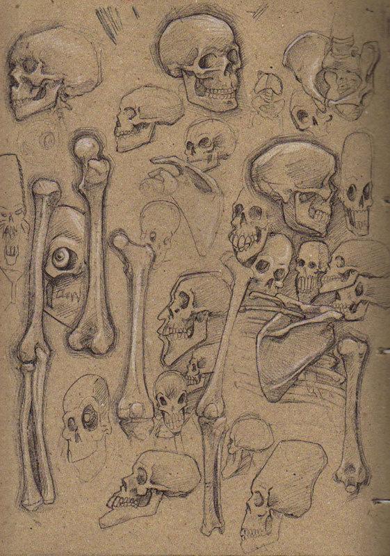 The Journal Portal #drw #illustration #skull
