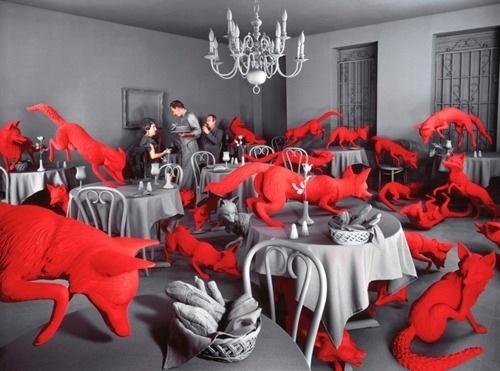 I-see-u.jpg (JPEG Image, 500x371 pixels) #fox #red #art