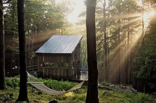 Kinfolk Magazine - Journal - BeaverBrook #woods