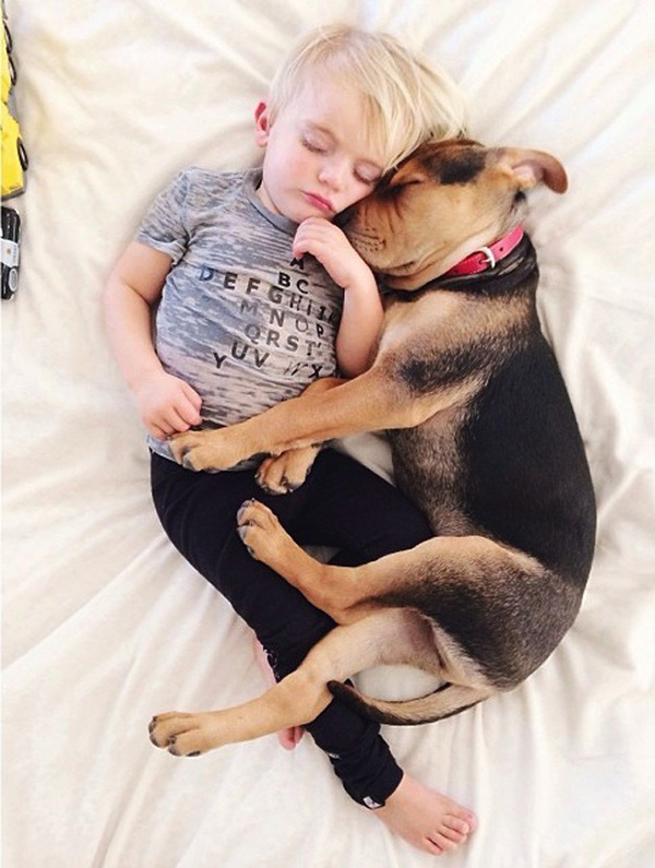 A Naptime Story with Dog and Baby 8 #photography #baby #dog