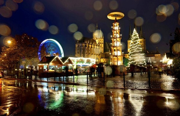14 Christmas tree in Erfurt Germany #christmas #trees #art #tree